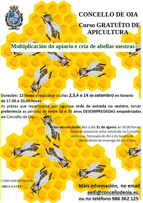 Infominho -  CURSO DE APICULTURA EN OIA - INFOMI�O - Informacion y noticias del Baixo Mi�o y Alrededores.