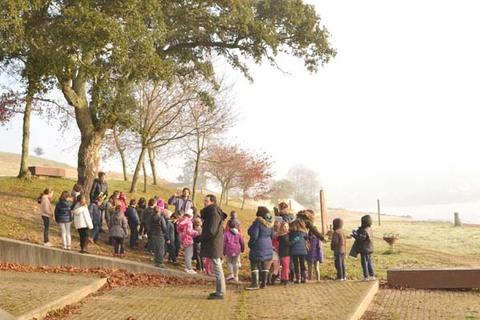 Infominho - Tomiño rinde tributo ás súas árbores con visitas escolares e arte en vivo - INFOMIÑO - Informacion y noticias del Baixo Miño y Alrededores.