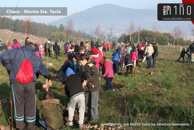 Infominho - Especial - Alumnos del CEIP A Sangriña plantan 200 árboles nobles en el Monte Santa Tecla de A Guarda - INFOMIÑO - Informacion y noticias del Baixo Miño y Alrededores.