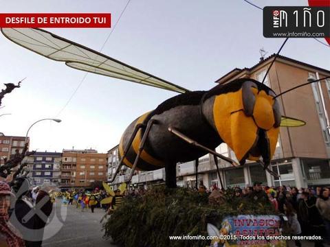Infominho - Tui repartirá 5.600 euros en premios en el Concurso Desfile de Comparsas y Grupos de Carnaval - INFOMIÑO - Informacion y noticias del Baixo Miño y Alrededores.