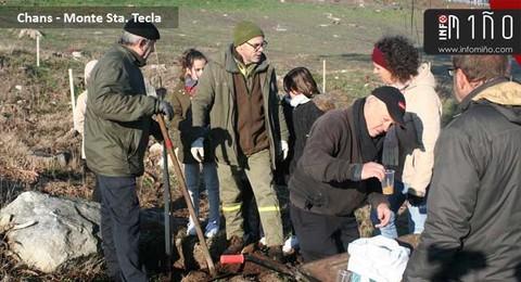 Infominho - Alumnos de A Guarda prantarán máis de 700 árbores no Monte Sta. Trega - INFOMIÑO - Informacion y noticias del Baixo Miño y Alrededores.