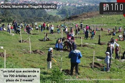 Infominho - Especial - Alumnos de A Guarda plantaron 225 árboles en la zona de Chans del Monte Sta. Trega - INFOMIÑO - Informacion y noticias del Baixo Miño y Alrededores.