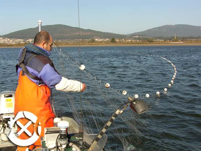 Infominho - Modificado el reglamento de pesca en el tramo internacional del Rio Miño - INFOMIÑO - Informacion y noticias del Baixo Miño y Alrededores.