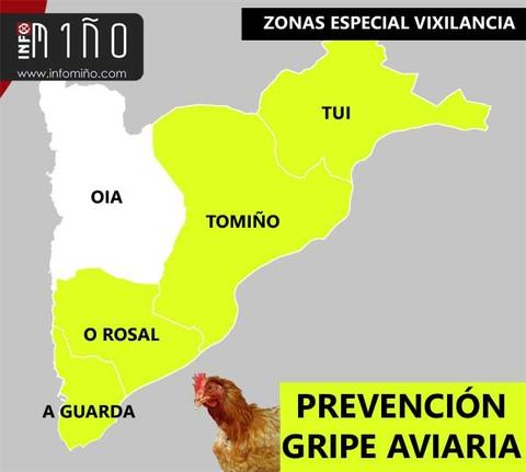Infominho - A Guarda, O Rosal, Tomiño y Tui, entre los concellos en la zona de especial vigilancia en la prevención de la gripe aviaria - INFOMIÑO - Informacion y noticias del Baixo Miño y Alrededores.