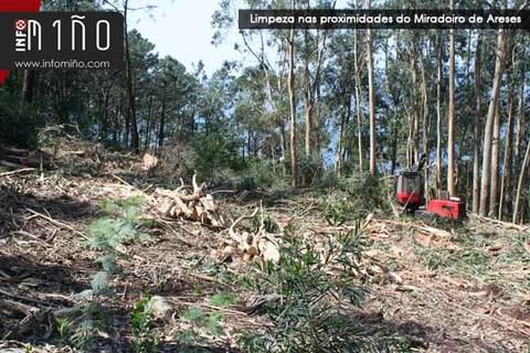 Infominho - A Comunidade de Montes de A Guarda inicia a limpeza da zona próxima ó Castro de Sta. Trega e o Miradoiro de Areses - INFOMIÑO - Informacion y noticias del Baixo Miño y Alrededores.