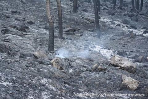 Infominho - Medio Rural prohibe as queimas agrícolas e forestais polas condicións meteorolóxicas e o índice de risco de lume - INFOMIÑO - Informacion y noticias del Baixo Miño y Alrededores.