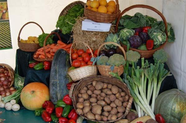 Infominho -  Vila Praia de Ancora acolhe Feira Agrícola e dos produtos tradicionais de 22 a 24 de setembro - INFOMIÑO - Informacion y noticias del Baixo Miño y Alrededores.