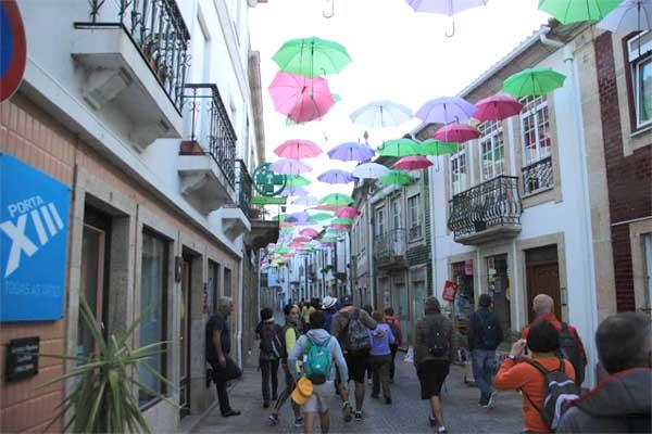 Infominho -  Más de 130 personas participaron en la Andaina entre Camiña y Tui organizada por Iacobus - INFOMIÑO - Informacion y noticias del Baixo Miño y Alrededores.