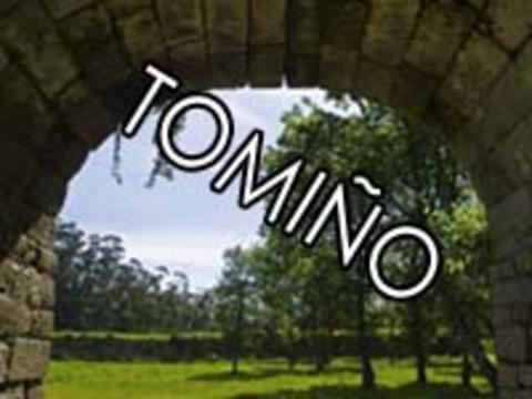 Infominho - TELÉFONOS DE INTERÉS DE TOMIÑO - INFOMIÑO - Informacion y noticias del Baixo Miño y Alrededores.